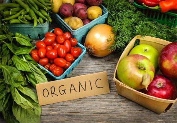 افزایش 50درصدی محصولات باغی با تغذیه تلفیقی