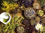گیاهان دارویی ظرفیت عظیم جهش اقتصادی