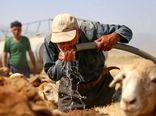 آبرسانی به مناطق عشایری استان با ۲۰ تانکر