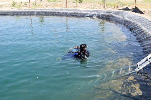 خطر مرگ با شنا در استخرهای کشاورزی قیروکارزین