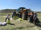 بوجاری 2600تن بذر خود مصرفی کشاورزان برای اولین بار در شهر ستان رازوجرگلان