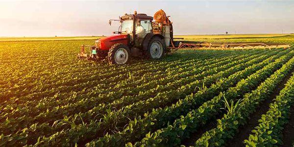 جایگاه ویژه کشاورزی در پساکرونا