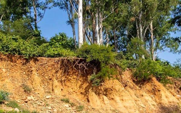 فرسایش خاک در شیروان کمتر از میانگین استانی است