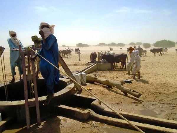 هشدار فائو درباره بحران جهانی صنعت کشاورزی