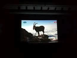 سینمای شهری دل از تهران نمیکَنَد!