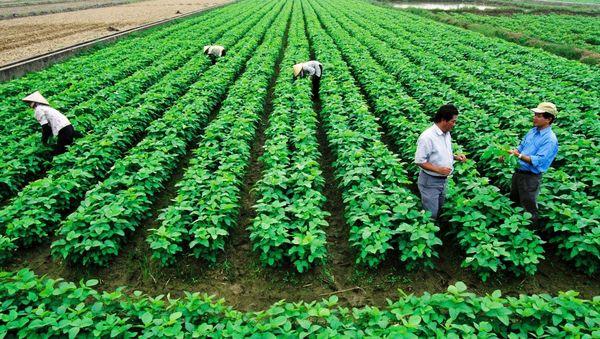 نقش احزاب در توسعه گردشگری کشاورزی