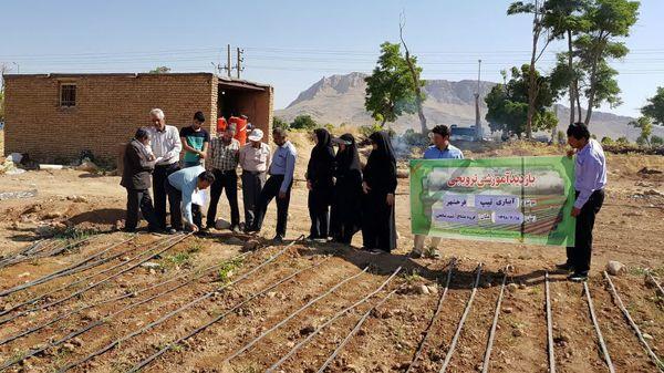 افزایش دانش و مهارت بهرهبرداران بخش کشاورزی شهرکرد