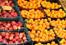 بازدید مدیر تعاون روستایی همدان از عرضه میوه طرح تنظیم بازار