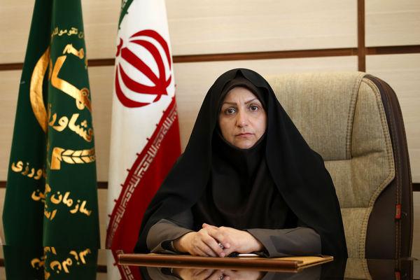 173 هزار تن نهاده دامی در استان قزوین توزیع شد