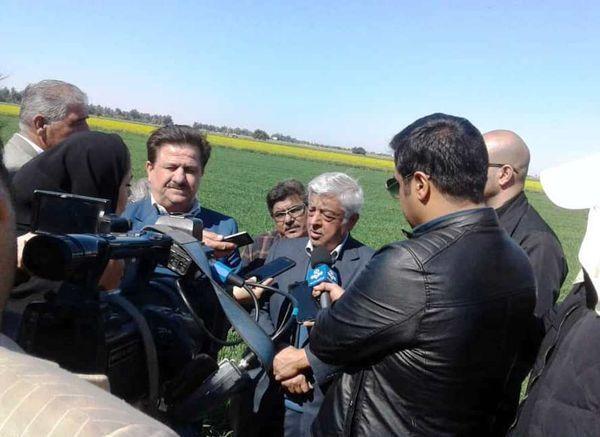 تولید 40 درصد شکر مورد نیاز کشور در خوزستان