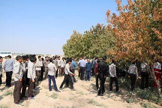 کارگاه آموزشی پیشگیری و مبارزه با آفت مگس مدیترانه ای در شهرستان بم برگزار شد