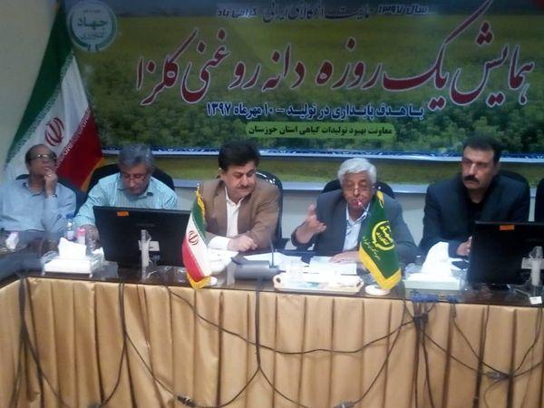 خوزستان رتبه دوم در تولید کلزا