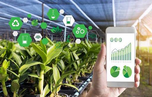 افزایش بهره وری 40 درصدی با هوشمند سازی بخش کشاورزی