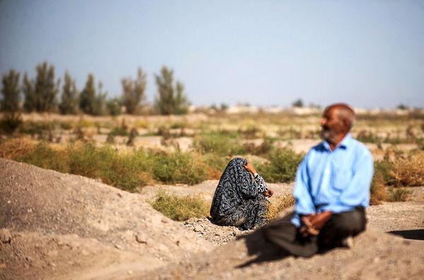 بارونق کشاورزی، مهاجران بهخانه برمیگردند