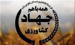 بهرهبرداری از شش طرح دامپروری در ایام الله دهه فجر