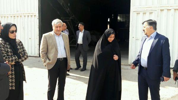 رییس سازمان جهاد کشاورزی استان قزوین از تعاونی گاوداران بویین زهرا بازدید کرد