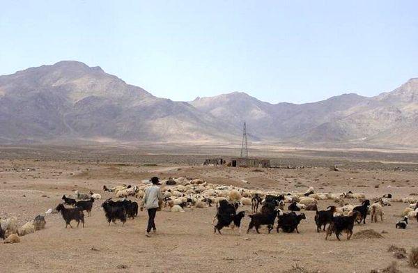 پنج میلیارد ریال در مناطق عشایری ابرکوه هزینه شد