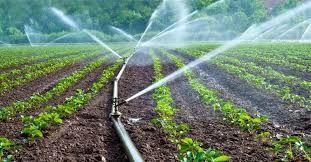 صرفهجویی ۱۱ میلیون متر مکعب آب کشاورزی در چهارمحال و بختیاری