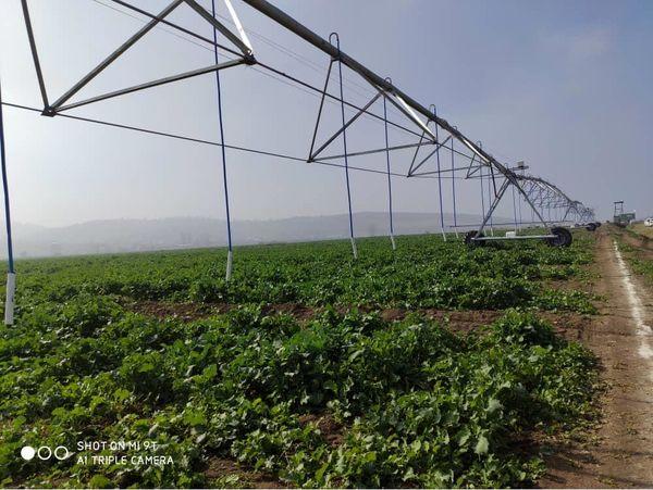 تجهیز 3000 هکتار مزارع کشاورزی جویبار به سیستم آبیاری نوین
