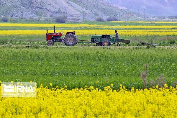 ۱۵ طرح کشاورزی در سقز به بهرهبرداری میرسد
