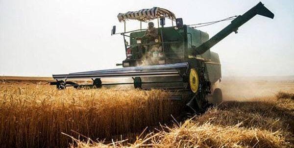 بیش از 36 هزار تن گندم در کردستان خرید تضمینی شد