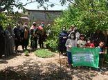 دوره آموزشی پرورش سبزی سالم در باغچههای خانگی ویژه زنان روستایی در آبیک برگزار شد