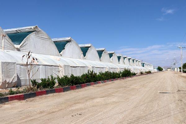 ۸۰ درصد از سازههای گلخانههای کشور در شهر گلشن تولید میشود