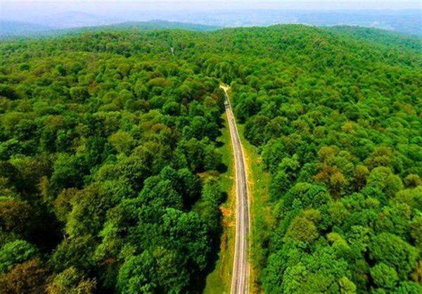 آغاز بررسیهای یونسکو برای ثبت جنگلهای هیرکانی