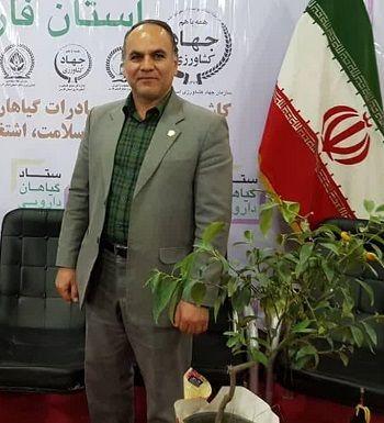تولید 3600 کیلوگرم زعفران در استان فارس