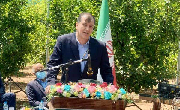 افتتاح 1634 طرح گلخانهای و سایبان در 29 استان کشور