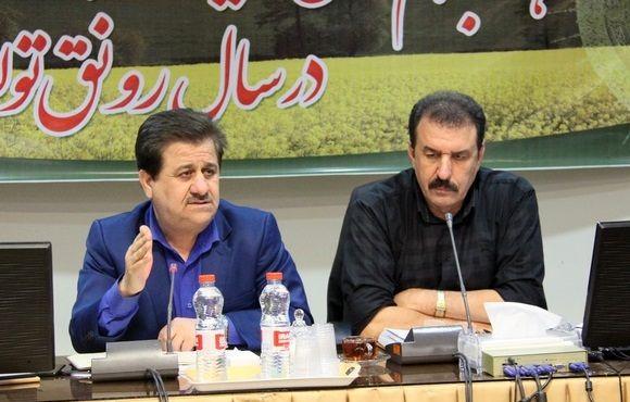 کلزا، دارای بیشترین افزایش قیمت خرید تضمینی در استان خوزستان