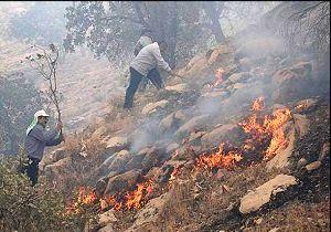 پایان اطفای حریق در جنگل های حفاظت شده کوه خاییز