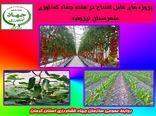 بهرعبرداری از 15 طرح کشاورزی و آب وخاک در شهرستان ارزوئیه در هفته جهاد کشاورزی