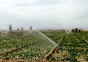 بهرهبرداری از 57 طرح کشاورزی در شهرستان طبس