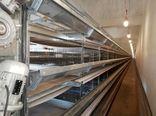 افتتاح واحد پرورش مرغ تخم گذار ۱۵۰ هزار قطعه ای در شهرستان ابرکوه