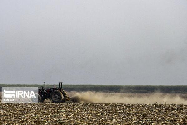 ۳۰۱ هزار هکتار اراضی کردستان زیر پوشش طرح ارتقای امنیت غذایی میرود