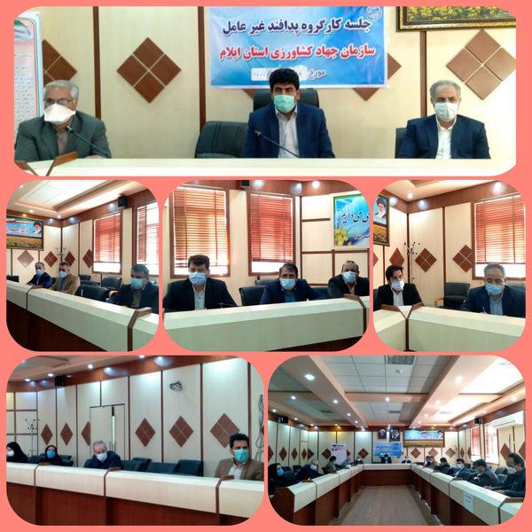 اولین جلسه کارگروه پدافند غیر عامل سازمان جهاد کشاورزی استان ایلام در سال ۱۴۰۰