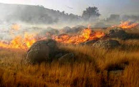 آتش سوزی در مراتع شهرستان دماوند مهار شد