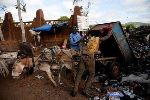 جمعآوری زباله با الاغ