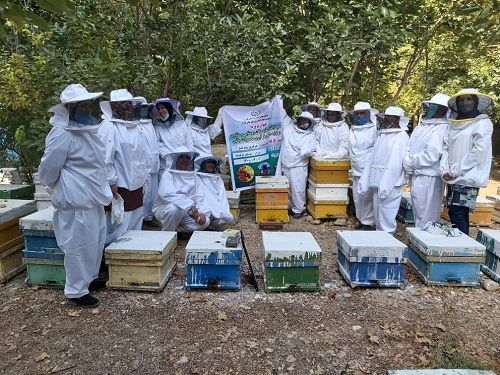 آغاز طرح توانمند سازی زنان روستایی شیراز در تولیدات زنبور عسل