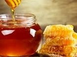 بیش از ۱۷۲ تن عسل در مانه و سملقان برداشت شد