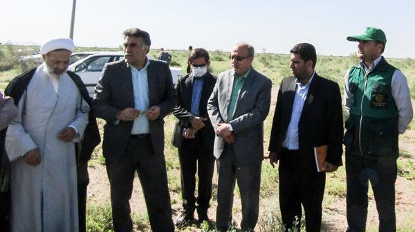 همت جهادی برای دفع ملخ های مهاجم به ارضی کشاورزی خراسان جنوبی