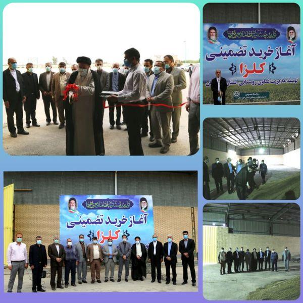 اقدام تعاون روستایی، آغاز پشتیبانی توسعه کشت کلزا در خوزستان