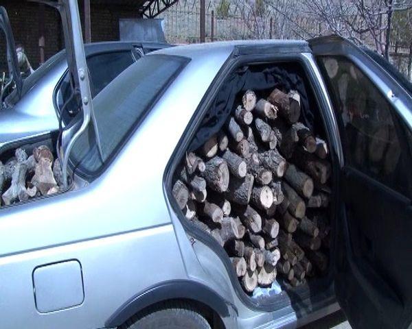 دستگیری قاچاقچیان چوب در لردگان