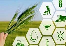 ترویج یافته ها و دانش کشاورزان نمونه به سایر بهره برداران ضروری است
