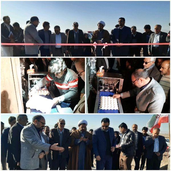 افتتاح طرح پرورش مرغ بومی تخمگذار شهرستان نهبندان در دومین روز دهه فجر