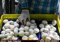۱۶۰ هزار تن قارچ امسال در کشور تولید میشود