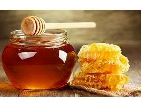 تولید 153 تن عسل در نکا
