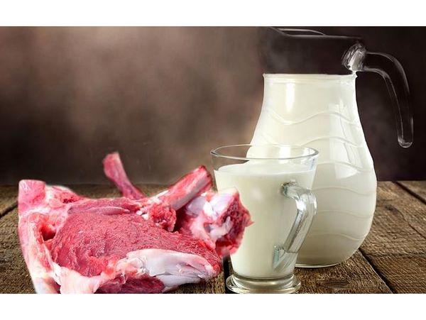 تولید سالانه 63 هزار تن شیر و گوشت قرمز در بابلسر
