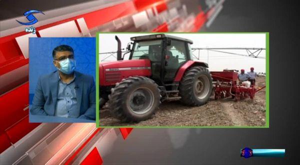پیش بینی تولید بیش از ۳۲۰ هزار تن گندم در استان قزوین